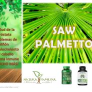 Saw Palmetto: Beneficios