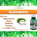 Guanabana: Beneficios sorprendentes
