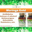 Moringa Gold