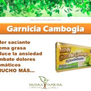 Garcinia Cambogia, una ayuda natural para perder peso.